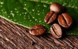 SẢN PHẨM SẠCH  - High Resolution Coffee Beans Best Quality Image 300x188 - Thông tin