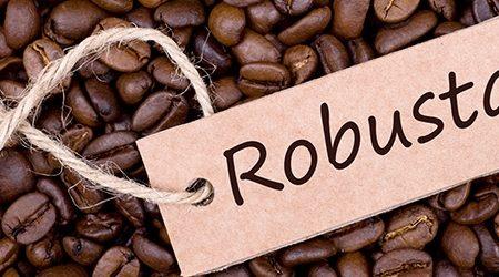 - C Robusta beans 450x250 - CÀ PHÊ R0BUSTA [object object] - C Robusta beans 450x250 - Trang Chủ