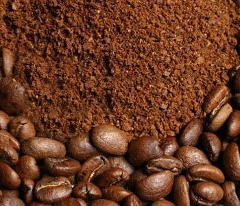 báo giá cà phê hạt nguyên chất giá rẻ chất lượng tại tphcm - maucuabotcaphe 1472609686 350x300 - Báo giá cà phê hạt nguyên chất giá rẻ chất lượng tại TPHCM