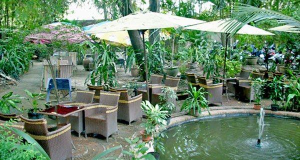 Hòa mình với thiên nhiên-Thiết kế quán cà phê sân vườn